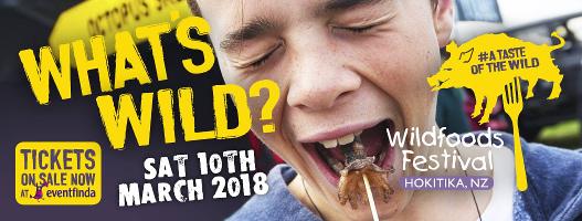2018 Hokitika Wildfoods Festival